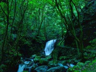 Kannon-daki fall: Fall of Guanyin