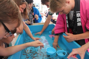 <p>Attempting to scoop goldfish - another attractive event at festivals&nbsp;</p>