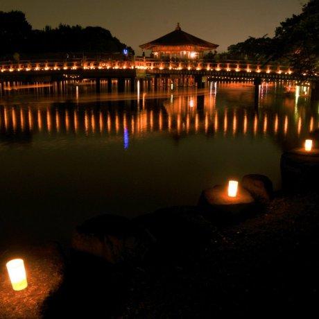 Festival de Lanternas Nara Tokae [Cancelled]