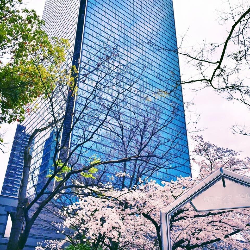 Одна вещь, которая поразила меня в этом городе - это сохранение ощущения сосуществования. Человек и природа, небоскребы и цветение сакуры.