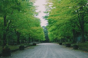 Hirosaki Park will make you calm