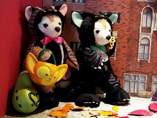 Duffy и его подружка Shellie May в костюмах готовы выпрашивать сладости (trick-or-treat)