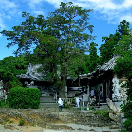 Pilgrimage Temples #14,15,16 and 17