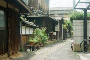 나오시마 골목