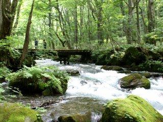 A bridge across the Oirase Stream in Aomori