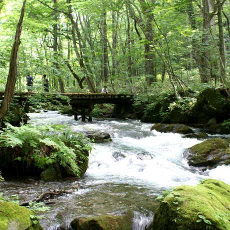 La Rivière Oirase à Aomori