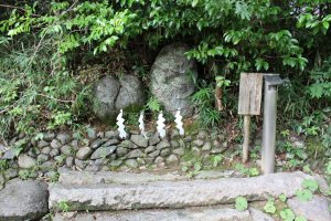A pair of the most realistic fertility stones