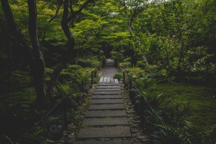 Hokyo-in Temple, Kyoto