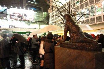 <p>ฮาจิโกะนั่งมองทางออกสถานีชิบูย่าไม่วางตาเลยจริงๆ&nbsp;</p>