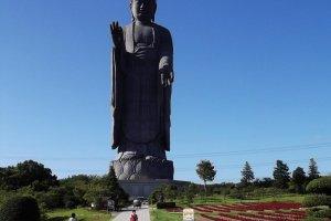 A aproximação à estátua