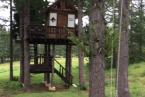Tree house and swing half way around the course.