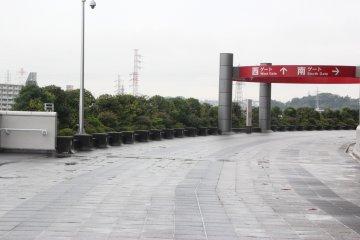 <p>Японские кустарники и дорога к другим воротам</p>