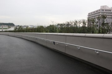 <p>Японские растения, посаженные вдоль дорожки, уводящей вниз</p>