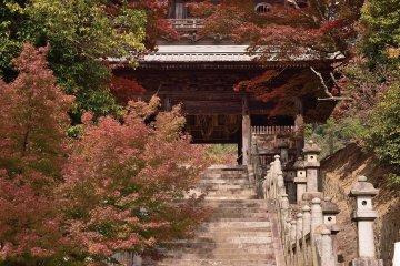 紅葉の箸蔵寺