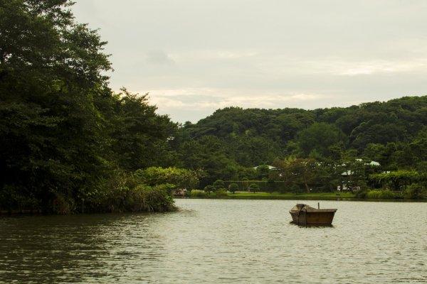 البحيرة الرئيسية