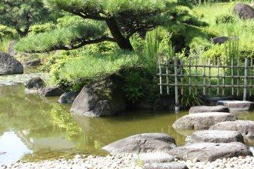 <p>К сожалению, на самую середину пруда нельзя было пройти</p>