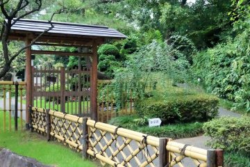 <p>The garden isn&#39;t large but is carefully tended and has many elements of older, more traditional gardens</p>