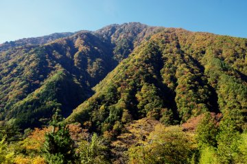 Mountain showing a touch of color as the trees start to turn in early autumn