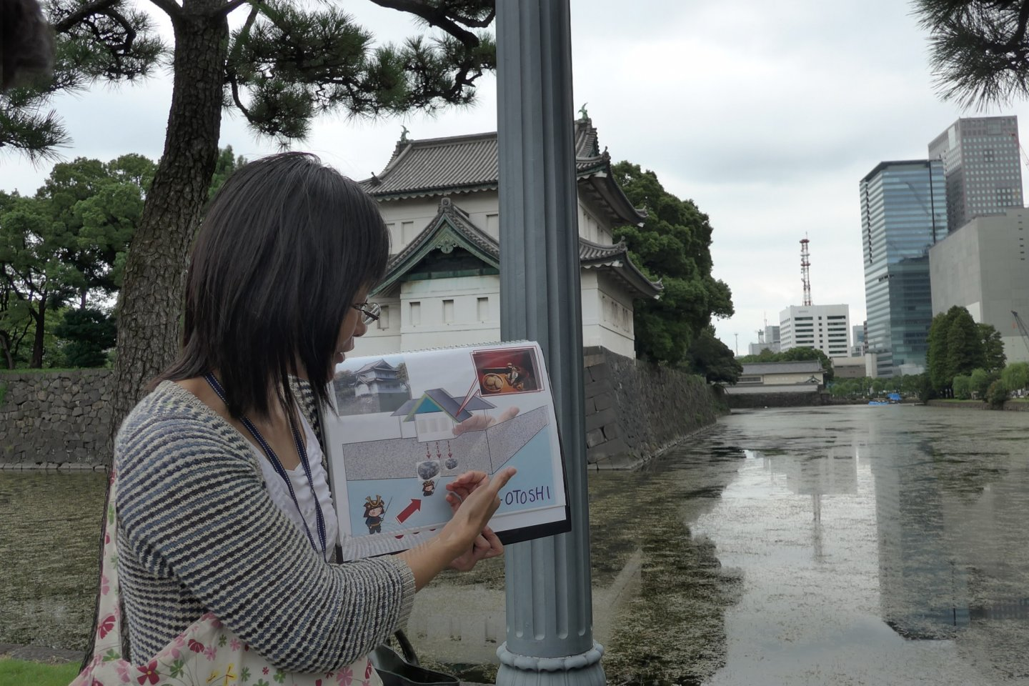 The guides are prepared with illustrations on some features of the site.