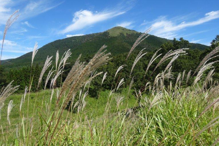 Осень в высокогорье горы Асо