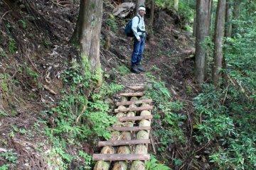 <p>A log and plank bridge near the trailhead</p>