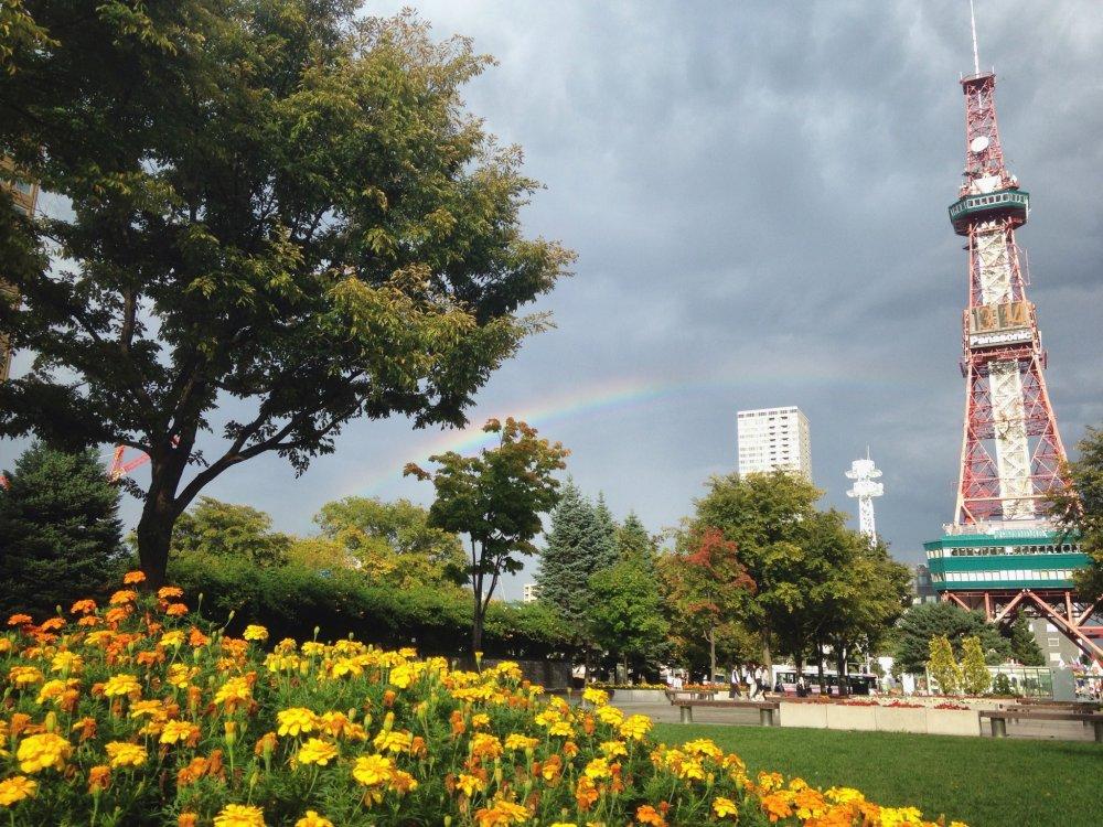 Whooaa! Ada pelangi di tengah langit kelabu. Menghiasi pemandangan Taman Oodori dan TV Tower Sapporo.