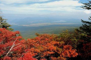 <p>Lake Yamanaka in the distance</p>