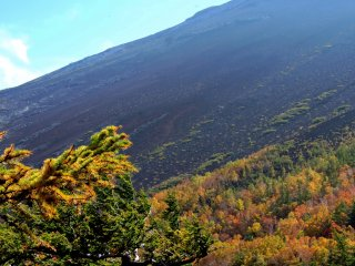 The upper slopes of Mount Fuji are a dark wasteland of volcanic gravel