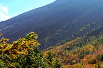 <p>The upper slopes of Mount Fuji are a dark wasteland of volcanic gravel</p>