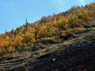 The treeline ends at the 5th station, giving way to loose volcanic gravel