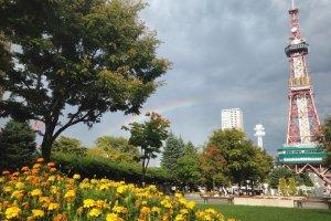 Warna-warni Taman Odori