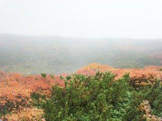 Ketika tiba di stasiun pendakian, kabut masih tebal namun sudah terlihat nuansa musim gugur.