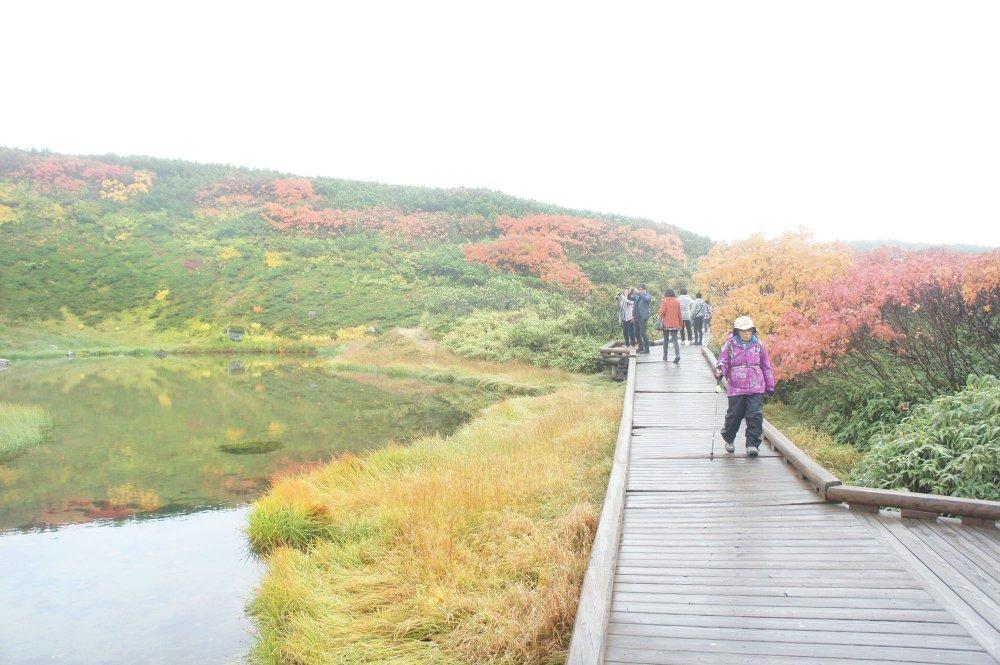 Telaga kecil dengan refleksi rerumputan yang menguning, khas musim gugur.
