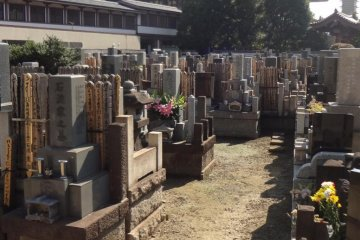 The temple cemetery. Japanese cemeteries are often crowded and this one is no exception. There are some very old gravestones here.
