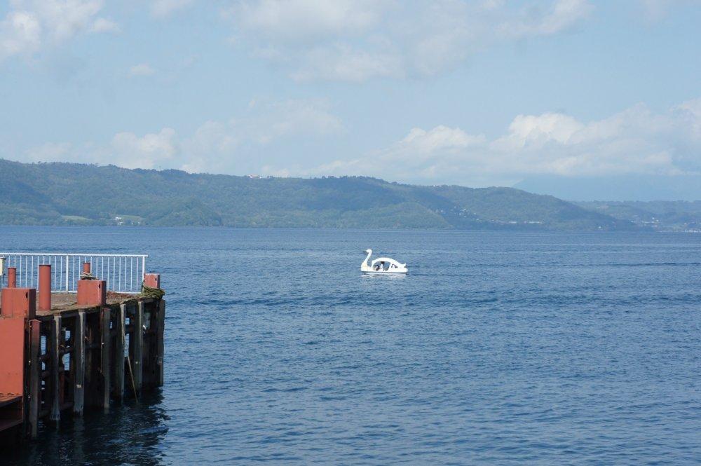 Seekor (perahu) angsa sedang berenang-renang di Danau Toya