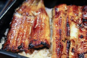 Jo-unaju (grilled eel on rice)