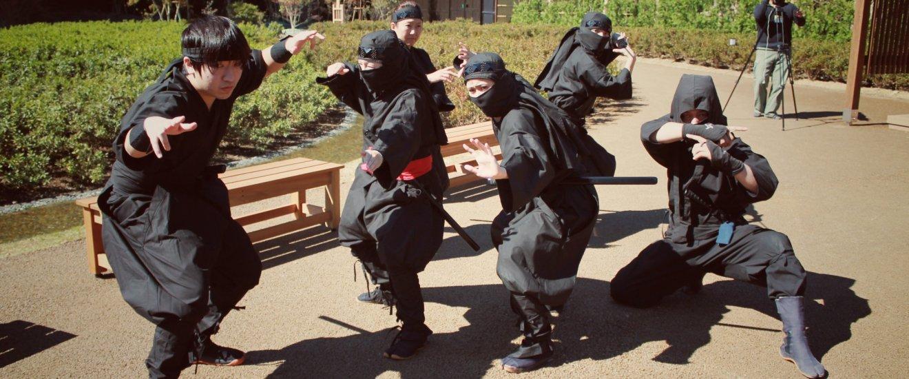 A ninja performance