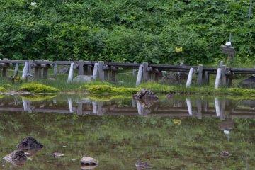 Small pond called Mida-ga-ike on the way down