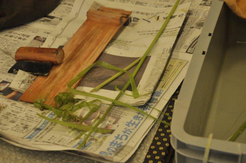 <p>Hemp, one of the raw materials used at Omi-jofu</p>