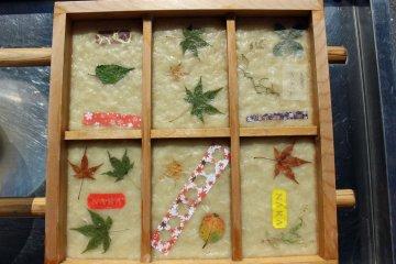 """Free Japanese """"Washi"""" Paper Making"""