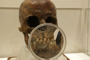 People filed their teeth as a fashion