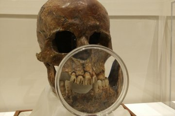 <p>People filed their teeth as a fashion</p>