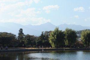 Taman di kastil Matsumoto