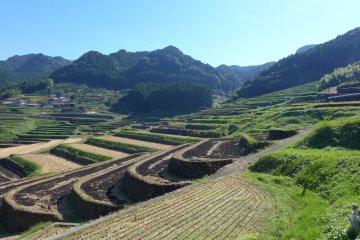 <p>Views of the terraces surrounding the village</p>