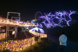 Every ride is illuminated by the beautiful decorations.