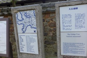 The plaque describing the ginkgo tree, like others here, are also in English