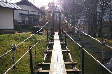 <p>Walking across this bridge requires good balance</p>