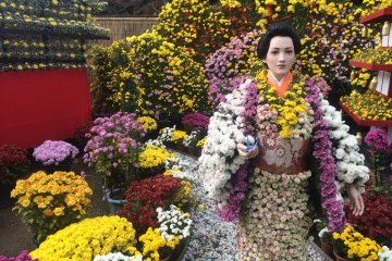 <p>Can you spot the doll among the flowers?</p>