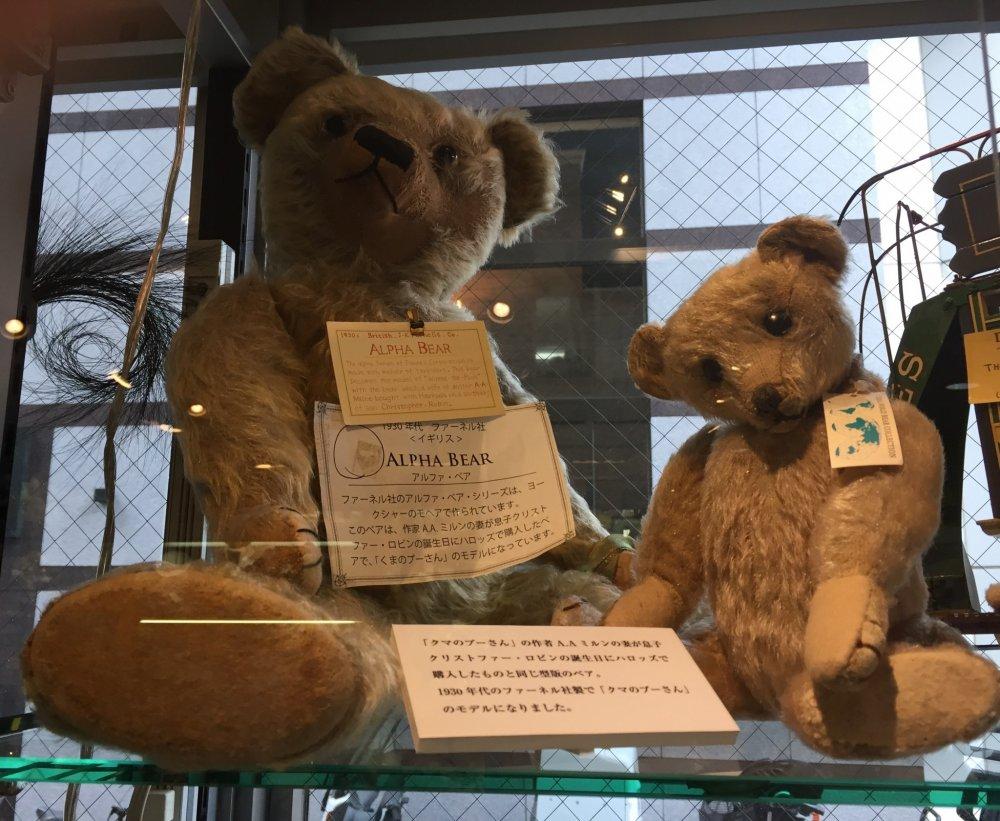 Выставочные Alpha Bear из Англии