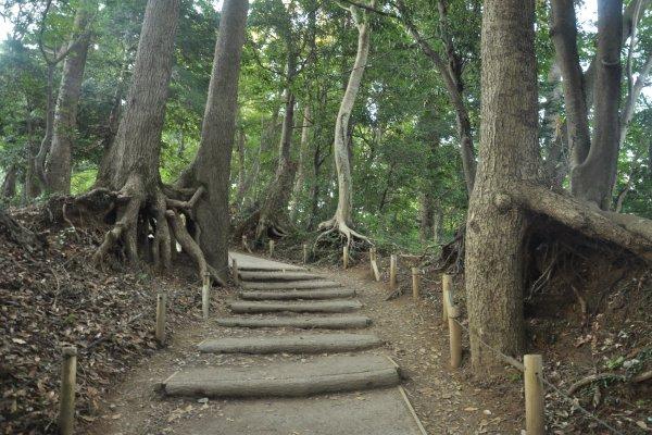 gunung-takao - Photos